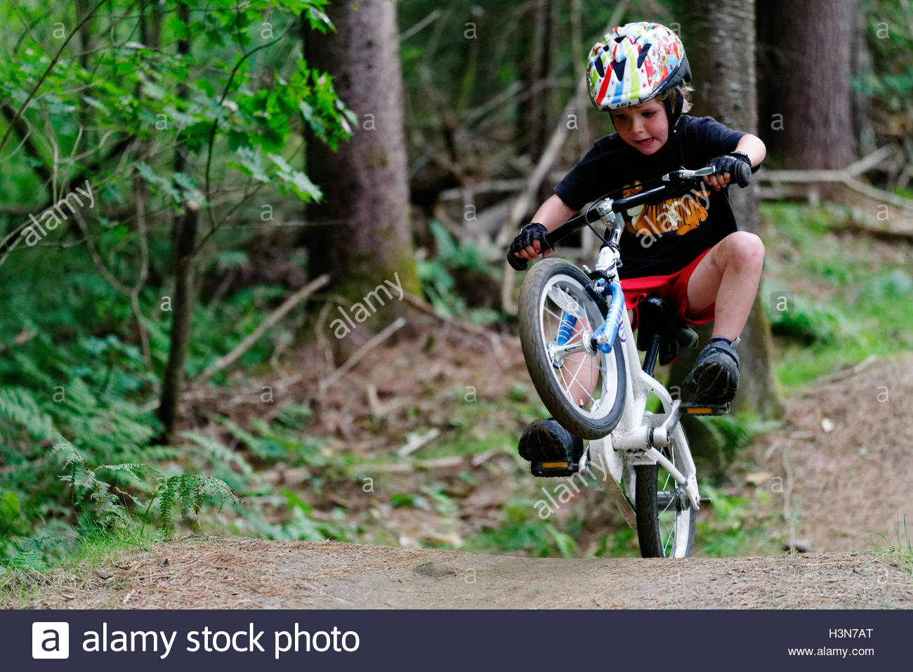 a-young-boy-4-yrs-old-popping-a-wheelie-on-a-pump-track-H3N7AT